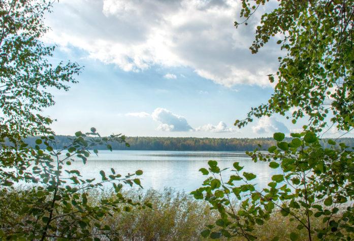Виды на озеро Пионерское