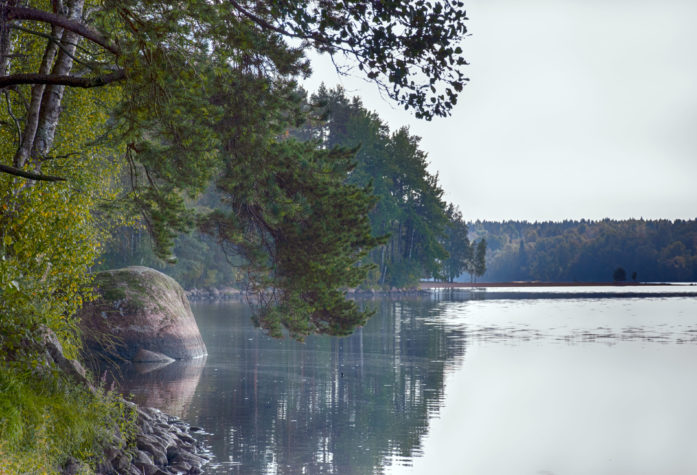 Озеро Пионерское вид с поселка