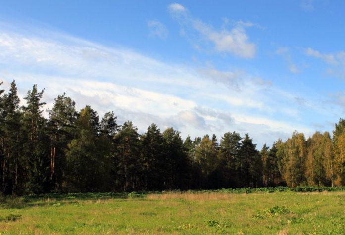 Участки в области рядом с Озеро Пионерское